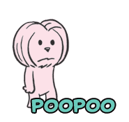 popoo